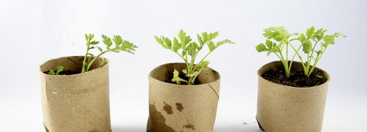 Responsible Chotchkies: Green Trade Show Giveaways